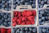 Blueberries and raspberries — Stock Photo
