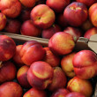 Nectarines at a market - Stock Photo