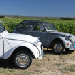 Stock Photo: Classic French cars