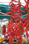 красного острого перца чили — Стоковое фото