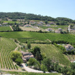 Stock Photo: Villages and vineyards