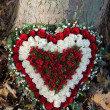 Heart shaped sympathy flowers - Stock fotografie