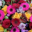 Mixed bouquet in bright colcors — Stock Photo