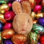 Easter egg bunny — Stock Photo #1713690
