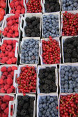 Blue and red berries — Stock Photo
