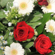 White gerberas and red roses — Stock Photo