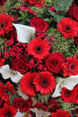 Floral arrangement in red and white — Stock Photo