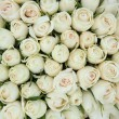 Group of white roses, wedding decorations — Stock Photo #18390961