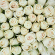 Group of white roses, wedding decorations - Стоковая фотография