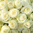 Group of white roses, wedding decorations — Stock Photo #18391261