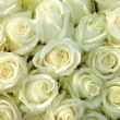Group of white roses, wedding decorations — Stock Photo #18391385