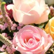 Wedding Flowers: Different shades of pink roses — Stock Photo #18655619