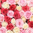 White and pink roses in arrangement — Foto Stock