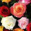 Multicolored roses in flower arrangement — Stock Photo #19305781