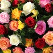 Stock Photo: Multicolored roses in flower arrangement
