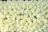 Group of white roses, wedding decorations — Stock fotografie