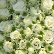 White wedding flowers — Stock Photo #19677549