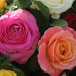 Multicolored roses in flower arrangement — Stock fotografie