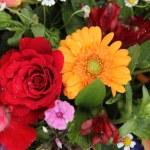 Flower arrangement in bright colors — Stock Photo