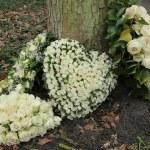 Heart shaped sympathy flowers — Stock Photo