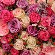 Purple and pink roses wedding arrangement — Stock Photo