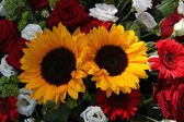 Slunečnice a růže — Stock fotografie