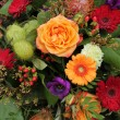 Colorful floral arrangement — Stock Photo