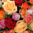 Stock Photo: Colorful rose bouquet