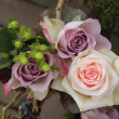 Big pink and purple roses — Stock Photo