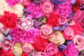 Bridal decorations in different shades of pink and purple — Stok fotoğraf