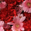 Wedding flowers in red and pink — ストック写真