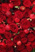 Ranunculus, bagas e rosas em um grupo — Fotografia Stock
