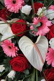 Anturium, róże i gerbery w układzie Suknie ślubne — Zdjęcie stockowe
