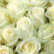 Group of white roses, wedding decorations — Lizenzfreies Foto