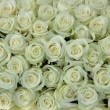 group of white roses, wedding decorations — Stock Photo