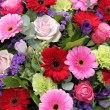 Wedding arrangement in red, purple and pink — Stock Photo