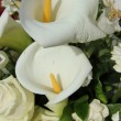 Calla Lily in white arrangement - ストック写真