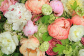 Peonies in a wedding arrangement — Stock Photo