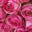 Big pink roses in a wedding centerpiece — Stockfoto