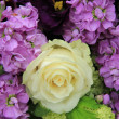 Purple and white bridal arrangement — Stockfoto