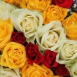 Yellow, white and red roses in a wedding arrangement — Stock Photo #26811633