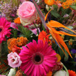 Floral arrangement in pink, red and orange — Stock Photo #26812495