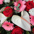 Anthurium, roses and gerberas in a bridal arrangement — Stock fotografie