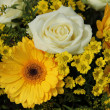 White roses and yellow gerberas — Stock Photo