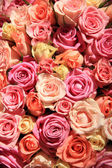 Roses in different shades of pink, wedding arrangement — Stock Photo