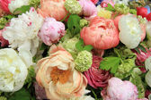 Peonies in a wedding arrangement — Stock Photo