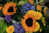 Sunflowers in a wedding arrangement — Stockfoto