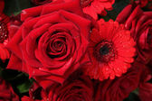 Red roses and gerberas — Stock Photo