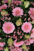 Gerberas and roses, pink bridal flowers — Stock Photo