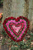 Heart Shaped Sympathy flowers in red and pink — Stock Photo